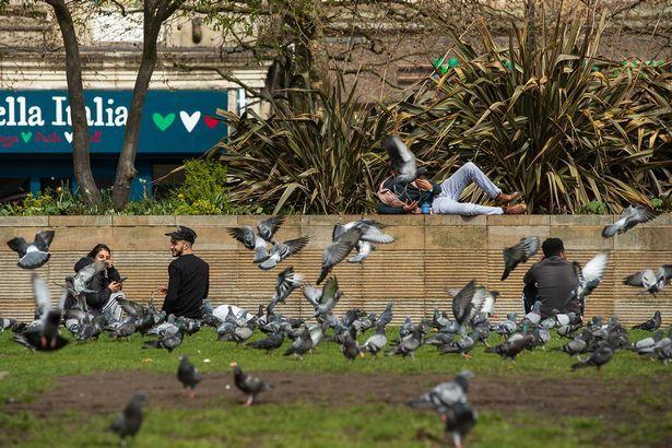 留学生在英国喂鸽子被罚150镑!这些奇葩法规来了解下